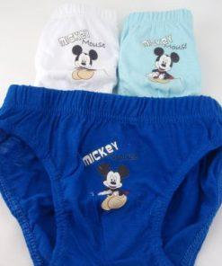 Calzoncillos infantiles niño Mickey